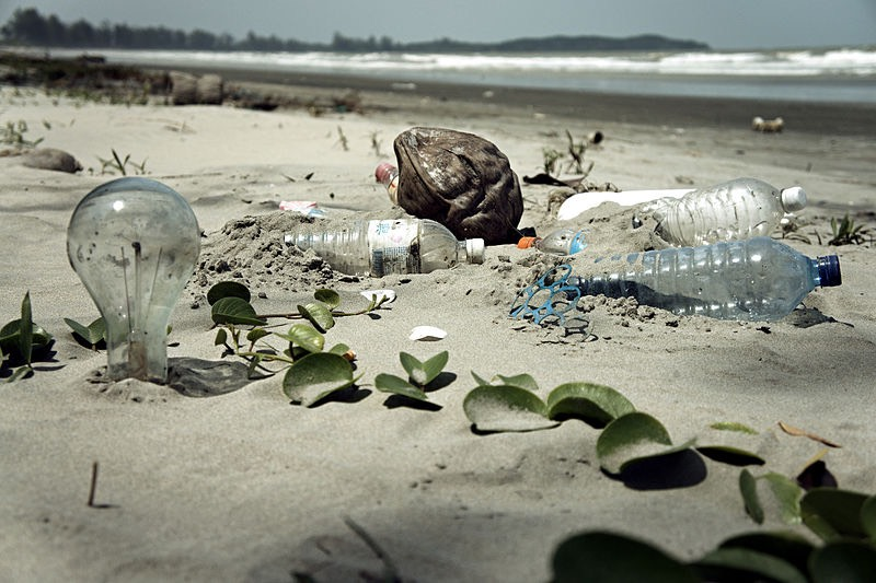800px-Water Pollution with Trash Disposal of Waste at the Garbage Beach